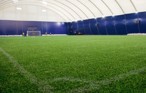 ВНидерландах убивают искусственные футбольные поля