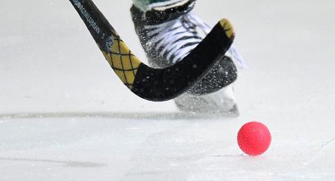 «Иркутский» чемпионат мира побенди 2019 года пройдет вВенерсборге