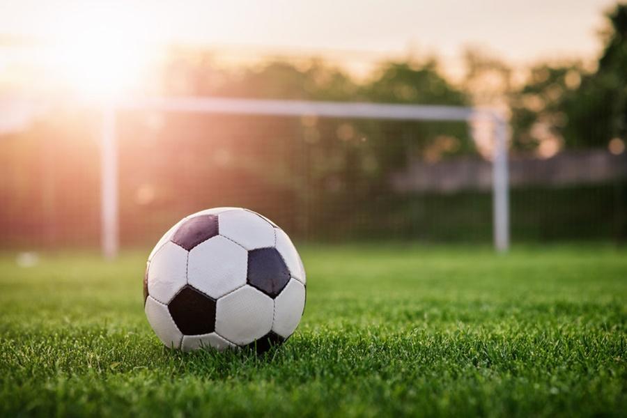 Бывший форвард МЮ может возглавить Болгарский футбольный союз