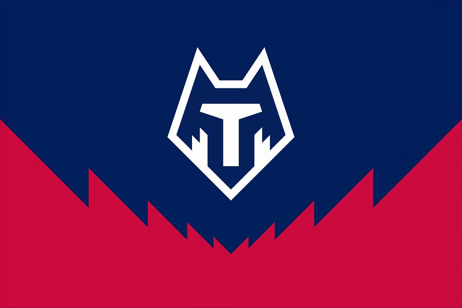 Тамбов не получил лицензию для игры в ФНЛ или ПФЛ на следующий сезон