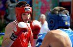 Федерации бокса Севастополя и Белгорода договорились о сотрудничестве