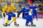 Швеция забила 16 голов Венгрии и вышла в полуфинал ЧМ по хоккею с мячом