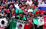 Прыжки болельщиков в Мексике вызвали землетрясение