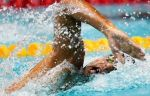 Российским пловцам запретили искупать в бассейне тренера по случаю победы на ЧЕ
