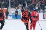 Хоккей с мячом. Чемпионат России