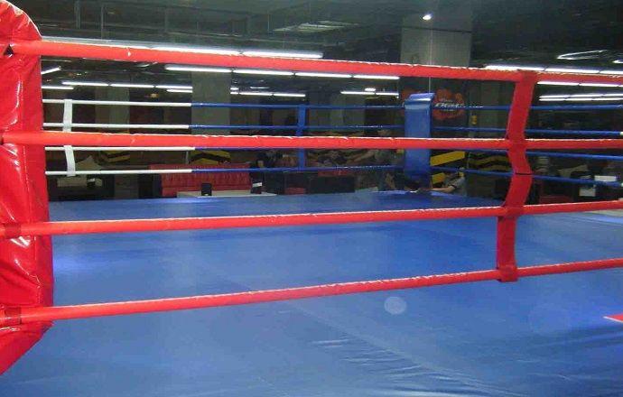 Австралийский боксёр умер через два дня после проигранного боя