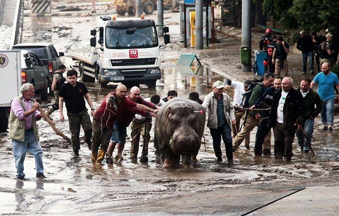 УЕФА не планирует переносить матч за Суперкубок из Тбилиси в связи с наводнением