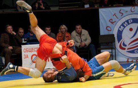Федерация самбо подала заявку на признание вида спорта олимпийским