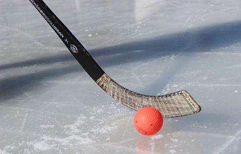 Шведы назвали фаворитов Кубка мира по хоккею с мячом