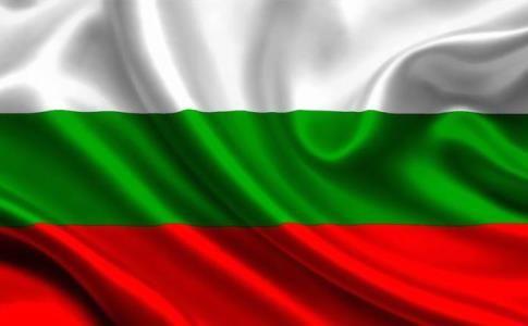 Матч чемпионата Болгарии был прерван из-за утки. ВИДЕО