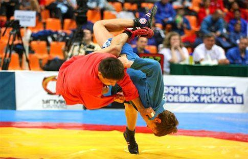 Россия и Сербия намерены бороться за включение самбо в программу ОИ