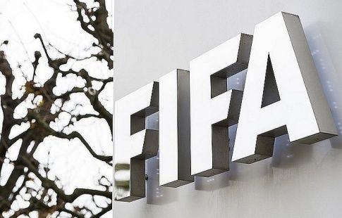 ФИФА оштрафовала Аргентину и Украину за поведение фанатов