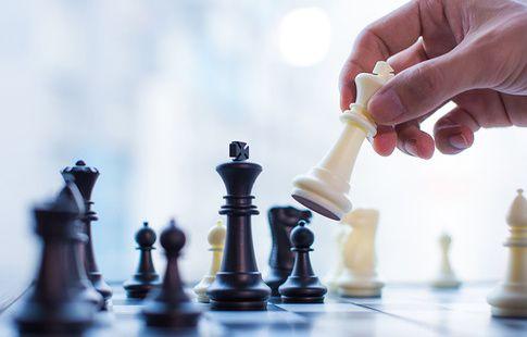 Журналист сделал предложение девушке во время всемирной шахматной олимпиады. ВИДЕО