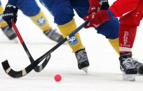 FIB создала петицию о включении хоккея с мячом в программу Олимпиаду