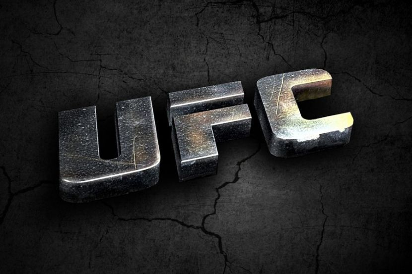 Эмеев единогласным решением судей победил Штольце на турнире UFC FIght Night